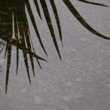 Lava split zwemvijver