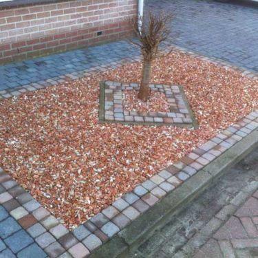 Baskisch rood split 18 - 25 tuin aangelegd