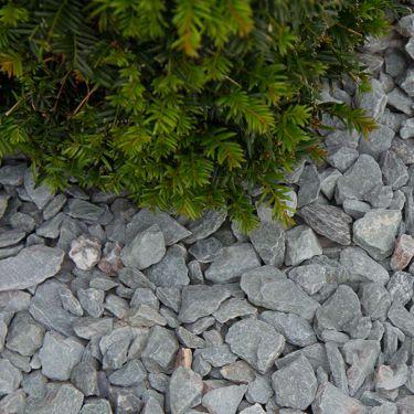 Canadian slate groen 15/30 aangelegde tuin